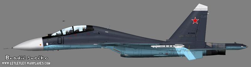 Su-30 RF-95696 01