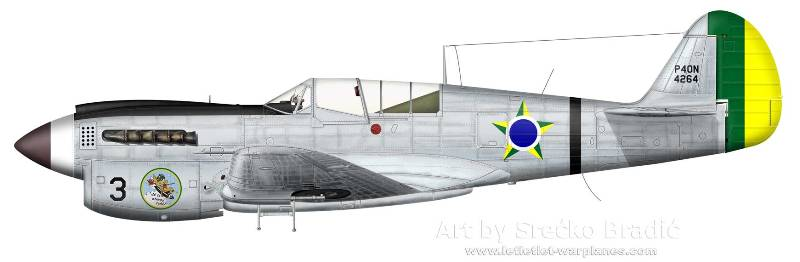 curtiss-p-40n-brazil-3.jpg