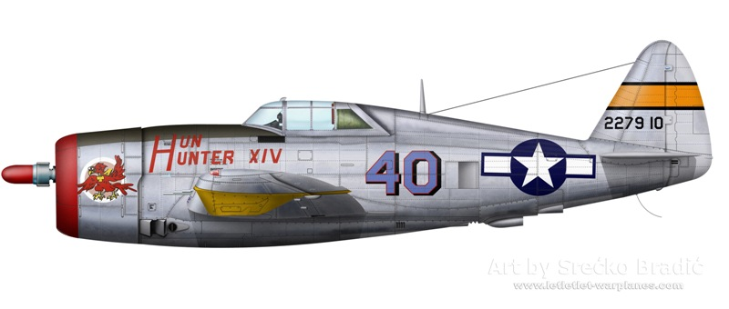p-47d-hun-hunter-xiv.jpg